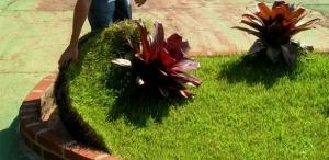 Sobre a laje, o jardim tem um substrato com tecnologia que retém a água da chuvas. Imagem: Uol/reprodução