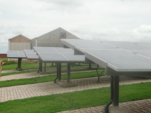 Painéis foram instalados em gramado ao redor de prédio do campus (Foto Carolina CarettinCCS-UFSCar)