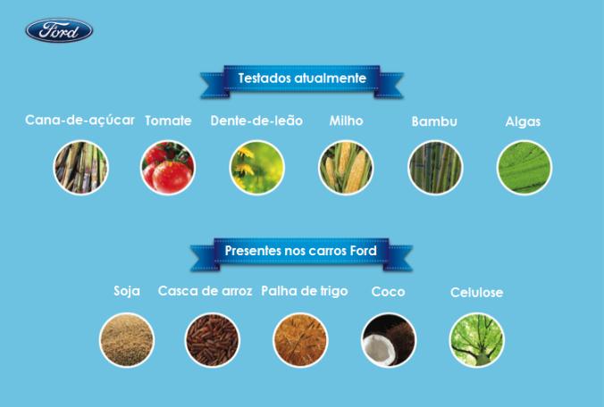 Infografico vegetais
