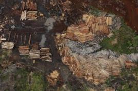 Serrarias que processam ilegalmente árvores da floresta amazônica são vistos perto do Rio Pardo, no município de Porto Velho, em Rondônia