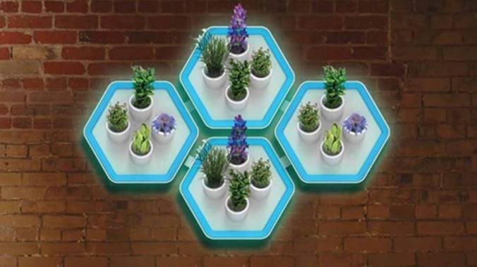 aquacity jardim