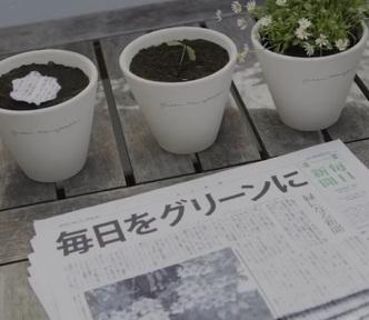 jornal-sustentavel