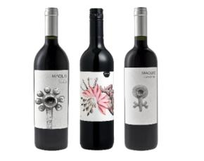 vinho-sustentavel2