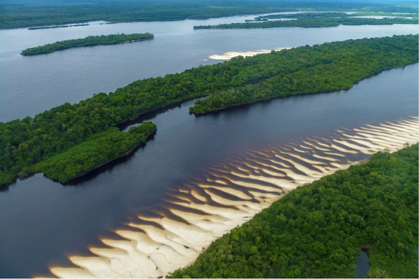 parque_nacional_da_amazonia